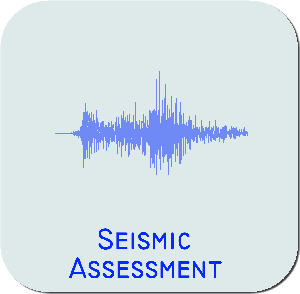 seismic assessment
